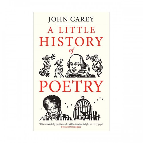 A Little History of Poetry (Hardcover, 영국판)